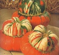 how to cook turban squash seeds